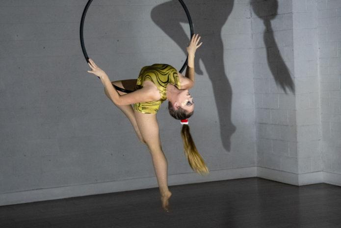 Tribe Fitness Dance Studio