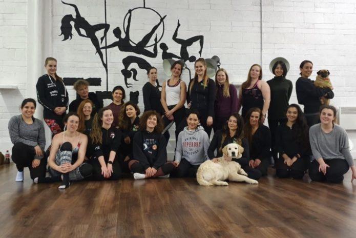 Tribe Fitness Dance Studio - Pole Fitnes Class