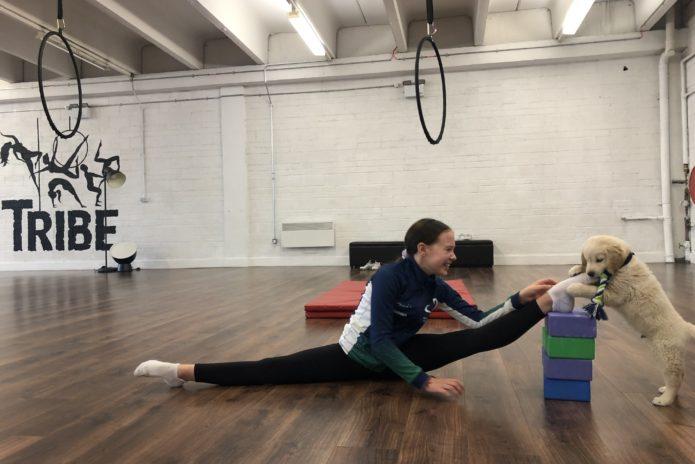Tribe Fitness Dance Studio - Flexibility Class
