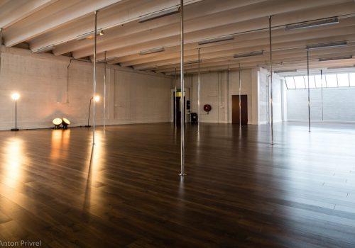 Tribe Fitness Dance Studio - Pole Room